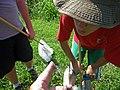 Environmental education (11738218545).jpg