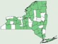 Equisetum sylvaticum NY-dist-map.png