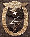 Erdkampfabzeichen der Luftwaffe naziversie.jpg