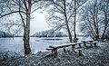 Erlensee im Winter 01.jpg