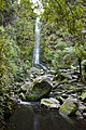 Erskine Falls Lorne Victoria - panoramio (1).jpg