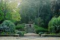Escalier dans le jardin des plantes de Montpellier.jpg