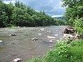 Esopus Creek 2014.jpg
