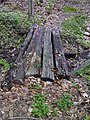 FLT M10 5.2 mi - Puncheon of rustic logs, 7' long, 2.5' wide - panoramio.jpg