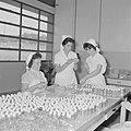 Fabriek voor schoonheidsproducten Helena Rubinstein in Nazareth Medewerksters b, Bestanddeelnr 255-4421.jpg