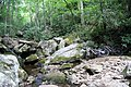 Farlow Gap (creek crossing) 04.jpg