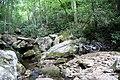 Farlow Gap (creek crossing) 04.jpg