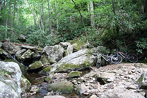 Farlow Gap - A creek running across Farlow Gap trail. The trail is unimproved, so mountain bikers and hikers find their own path to cross the creek.