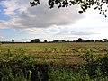 Farmland - geograph.org.uk - 44876.jpg