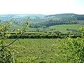 Farmland at Anchor - geograph.org.uk - 427557.jpg