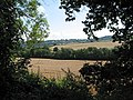 Farmland from Crews Hill - geograph.org.uk - 522479.jpg
