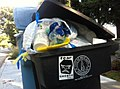 Fear Google art sticker by XVALA pictured on residential trash bin in Palo Alto, Ca 2011.jpg