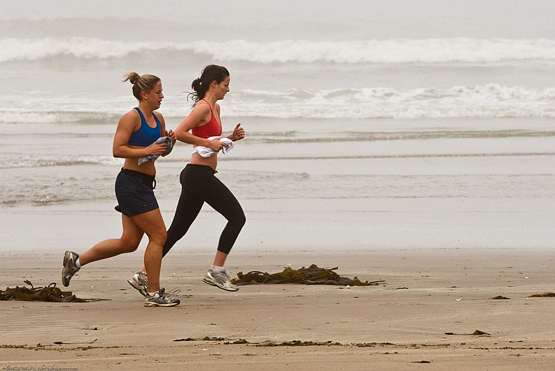 ファイル:Female joggers on foggy Morro Strand State Beach.jpg