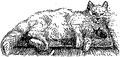 Feydeau - Le Petit Ménage - Illustration p8.png