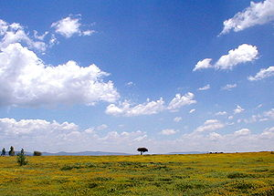 Mexican Plateau - A view of Mexican Plateau near San Miguel de Allende, Guanajuato
