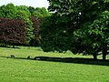 Field next to Hinton Ampner House - geograph.org.uk - 796315.jpg