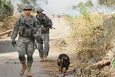 Flickr - The U.S. Army - Patrolling with K-9 Uwe.jpg