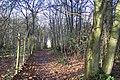 Footpath along Gravel Pit Wood - geograph.org.uk - 1592260.jpg