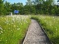 Footpath beside the motorway slip road - geograph.org.uk - 2458103.jpg