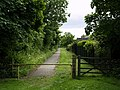 Footpath from Ivy Lane to New Road - geograph.org.uk - 842045.jpg