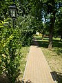 Footpath in the Central Park, Gyömrő, Hungary.jpg