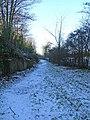 Footpath off Timber Lane - geograph.org.uk - 1636572.jpg