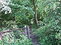 Footpath on Bunny Hill - geograph.org.uk - 747033.jpg