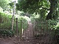 Footpath to Bartonsham - geograph.org.uk - 1892849.jpg