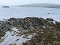 Foreshore on Lamb Holm - geograph.org.uk - 488839.jpg