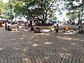 Fort Kochi view.jpg