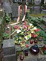 Franciszek Kleeberg grób.JPG