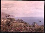 Funchal Bay, Madeira, by Sarah Angelina Acland, c.1910 (1).jpg