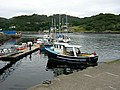 Gairloch Harbour at An Ard - geograph.org.uk - 216821.jpg