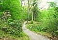 Garden in the Woods - IMG 2507.JPG