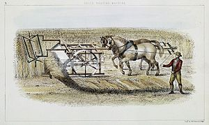 Scottish Agricultural Revolution - An 1851 illustration showing the reaping machine developed by Patrick Bell