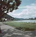 Gezicht op Miltenberg met de spoorbrug over de Main, Bestanddeelnr 256-0000.jpg