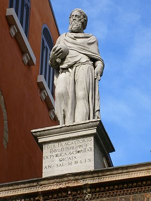 Girolamo Fracastoro - Image: Girolamo Fracastoro's statue in Verona 4
