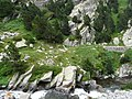 Gorges de Núria des del cremallera P1030236.JPG