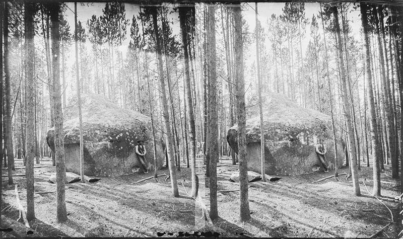 Wisconsin dells, yellowstone national park essay