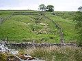 Grass Gill - geograph.org.uk - 186391.jpg