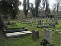 Graveyard of Holy Trinity Church - geograph.org.uk - 1172607.jpg
