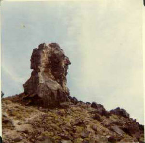 Millard County, Utah - Image: Great stone face 1
