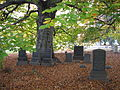 Green-Wood Cemetery Graves under a tree.jpg