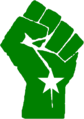 Green Fist with five-pointed star.tif