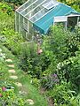Greenhouse - Flickr - peganum (2).jpg