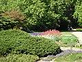 Großer Garten18.jpg