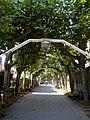 Guecho, Algorta - Avenida de Basagoiti 1.jpg