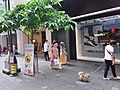 HK CWB 銅鑼灣 Causeway Bay 百德新街 Paterson Street shop n pet owner June 2019 SSG 05.jpg