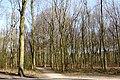 Haagsche Bos - Den Haag - 2011 - panoramio (4).jpg