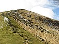 Hadrian's Wall west of Sycamore Gap - geograph.org.uk - 750538.jpg